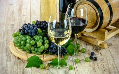 7. března 2020 Ochutnávka vín